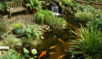 Koi Pond with Waterfall - quinju.com