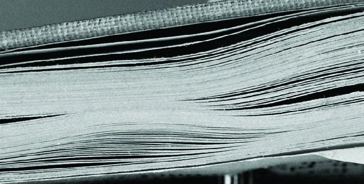 Resenha | Diário da Queda, de Michel Laub