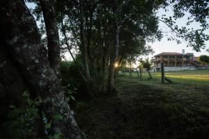 Quinta do Caminho: Natureza