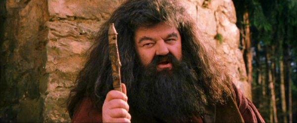 Hagrid e sua flauta doce