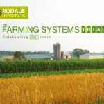 Agricultura Orgânica ou Convencional:  Revolução Verde, precisamos de herbicidas, pesticidas e adubos químicos para alimentar o mundo?