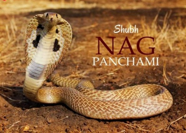 Nag Panchami 2017