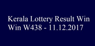 Win Win W438