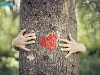 Ingin Menjadi Tenaga Ahli Kesehatan Lingkungan? Jurusan Ini Tepat Buatmu!