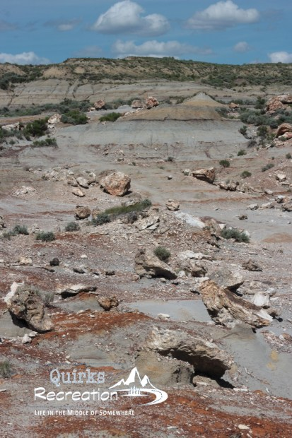 petrified forest at Theodore Roosevelt National Park