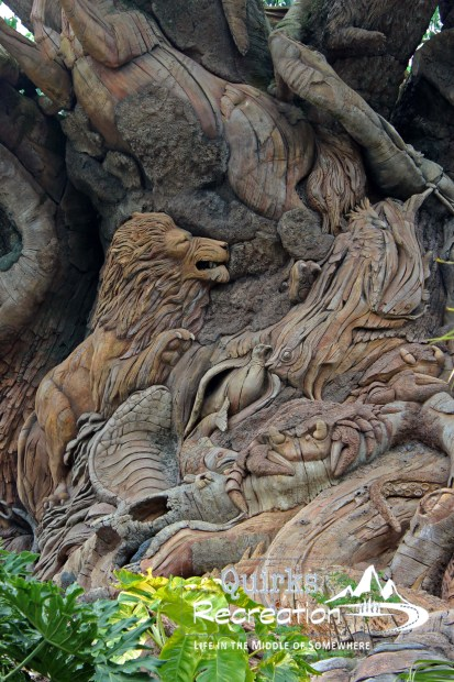 Closeup look of carvings in the Tree of Life at Animal Kingdom - Walt Disney World