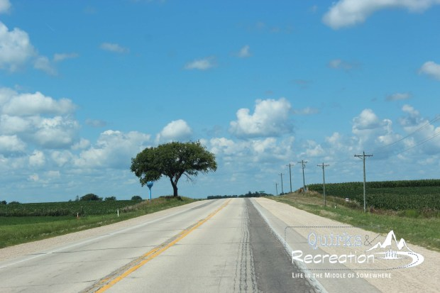Straight Wisconsin highway with a lone tree