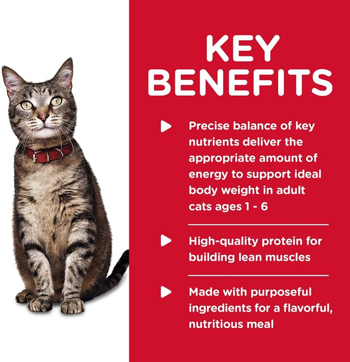infographic science diet cat food