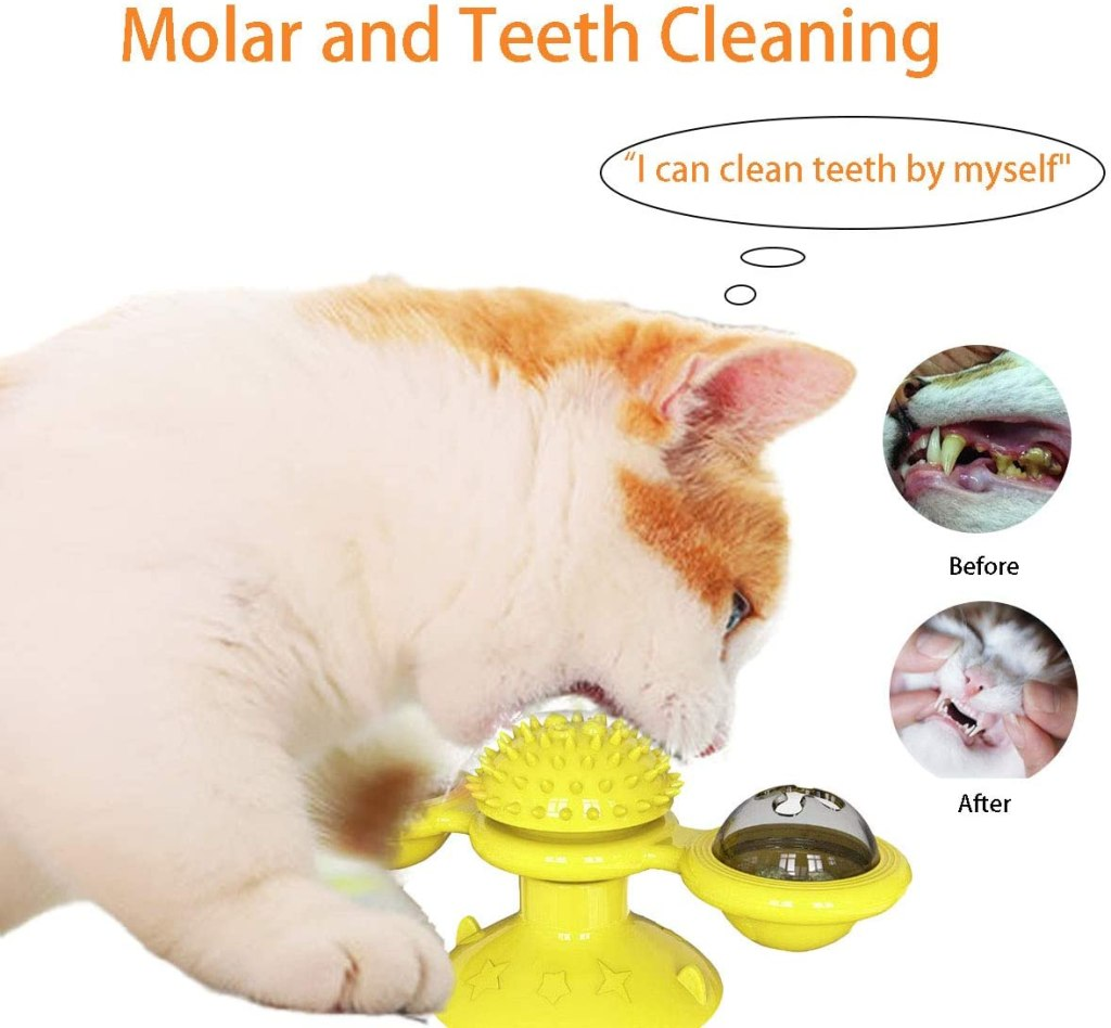 toothbrush feature of cat toy