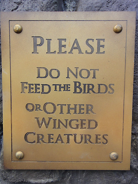 please-dont-feed-the-birds