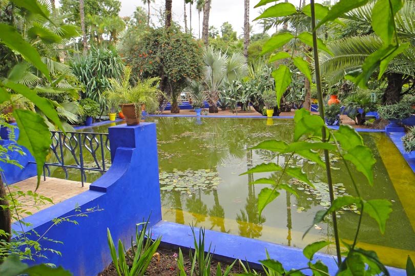pond-at-majorelle-garden