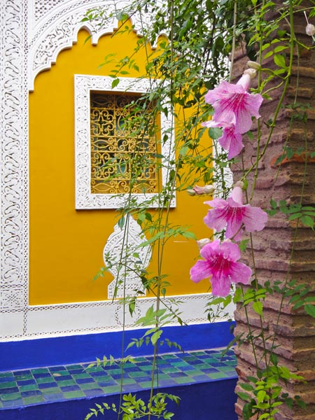 vibrant-colours-at-the-majorelle-garden-marrakech