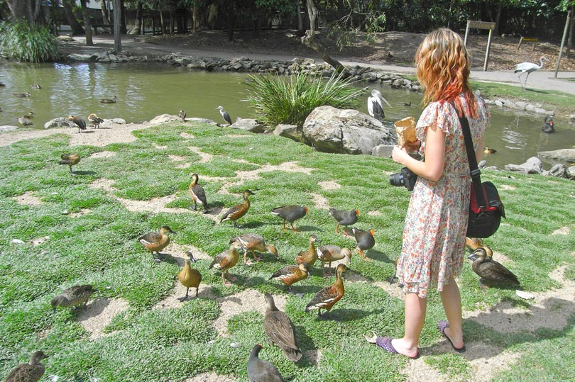 Feeding the birds at The Wildlife Habitat
