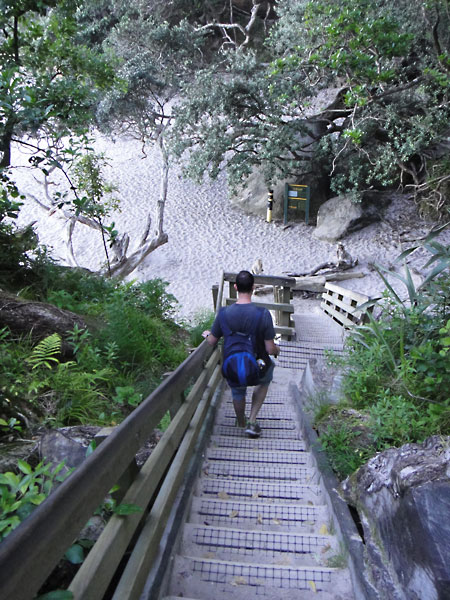 The steps down towards Cathedral Cove in New Zealand