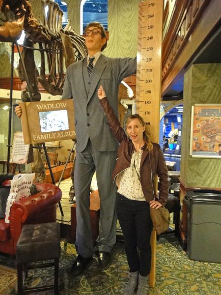 Figure of Ribert Wadlow - tallest man ever. Ripley's Believe it or not London.