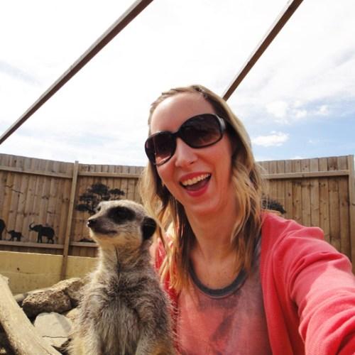 Meerkat selfie at Hoppers Animal World