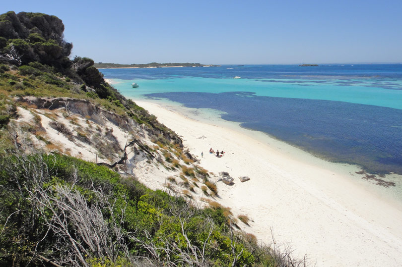 Beautiful Rottnest Island - catch the ferry from Fremantle and enjoy a day with the quokkas!