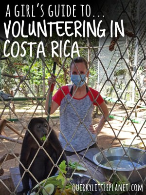 Famous for its wildlife, Costa Rica is a great place to spending some time volunteering with animals. This is my personal account of when I spent time at the Costa Rica Animal Rescue Center. Pin for later!