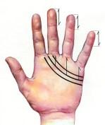 33 Medidas Línea del Corazón