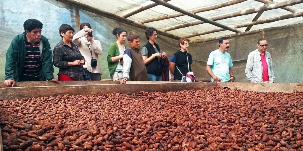 Chocolate Tour - Mindo - Ecuador | Quirutoa