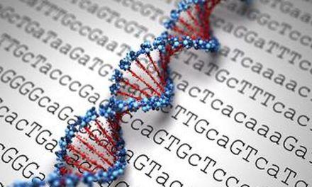 Siguiendo la huella de los organismos: de la Biología in vivo a la Biología in silico
