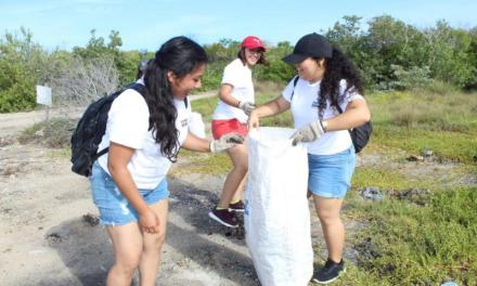 Más de 3,000 voluntarios trabajan para preservar el ecosistema costero de Yucatán
