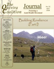 Resilience, Issue 32 – Building Resilience Part 1