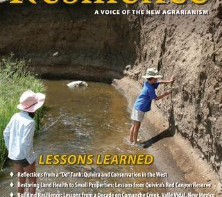 Resilience, Issue 37 – Lessons Learned