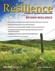 Resilience, Issue 40 – Beyond Resilience