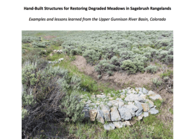 Applying Keyline Design Principles to Slope Wetland Restoration in a Headwater Ecosystem