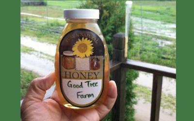 Episode 26 – Food, faith, and farming — the Good Tree Farm
