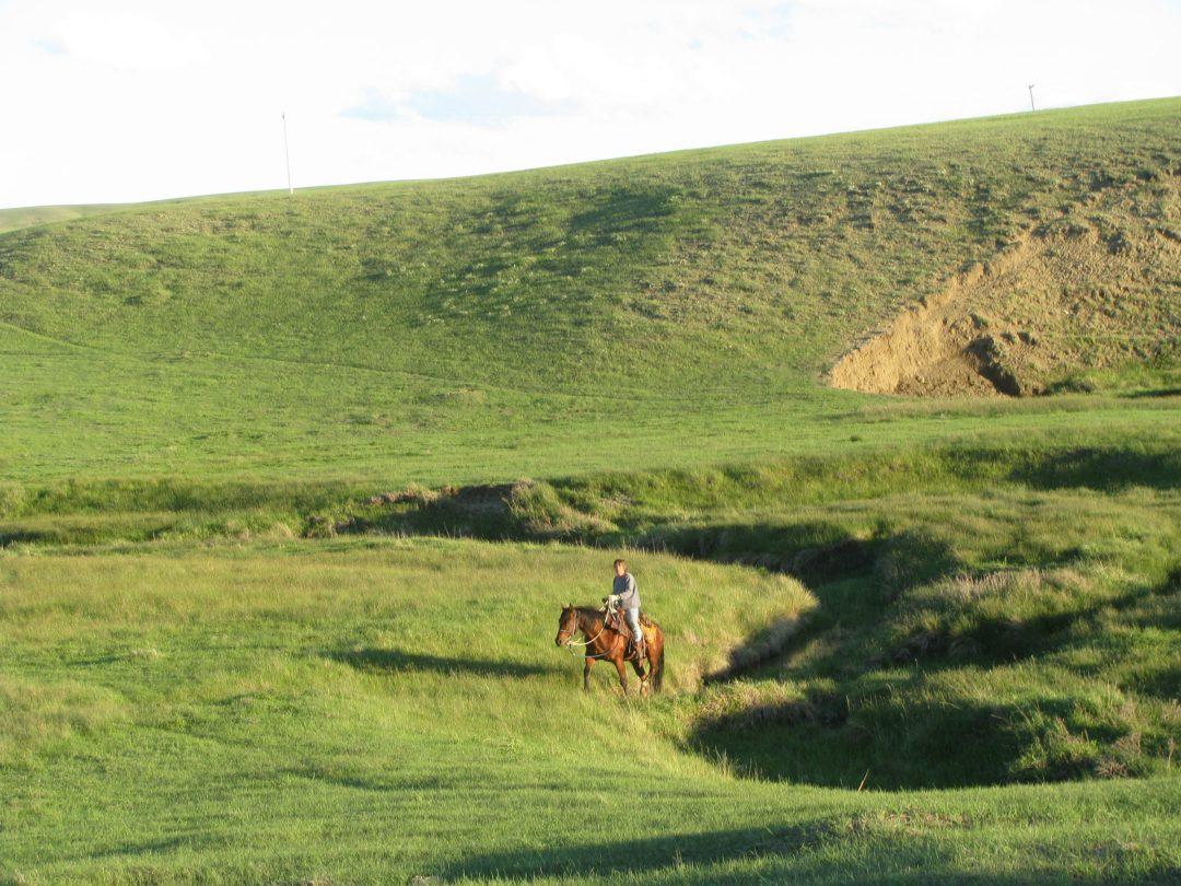 A land of grass ranch
