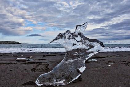 Baby Iceberg