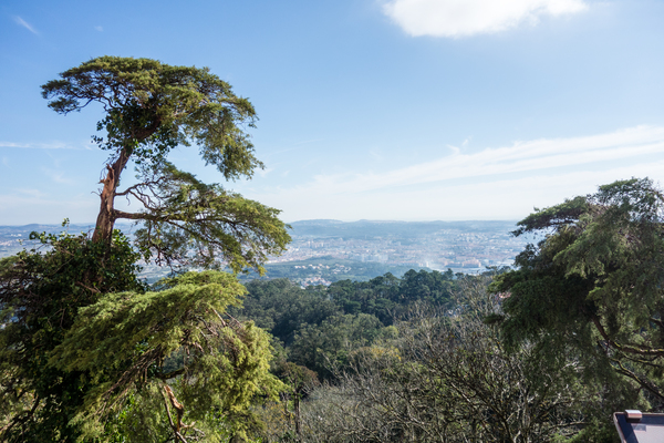 View from Sintra Palace