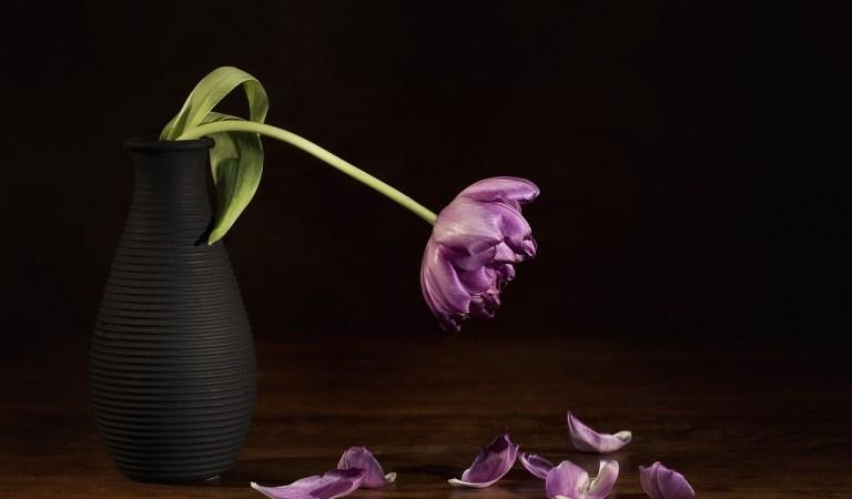 A morte faz parte da vida: Conheça o lado positivo da morte (Sim! Existe um!)