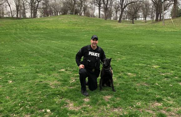 Dog Days to bring K-9 to QU