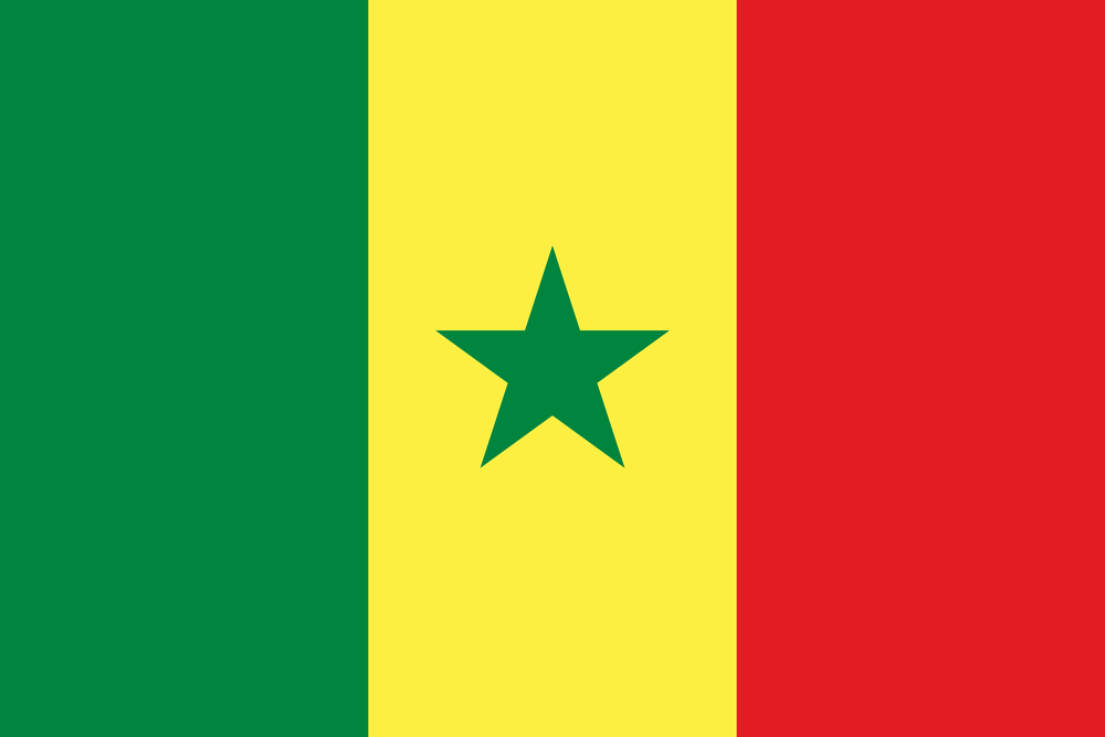 QUO ARTEM senegal-flag-medium Home