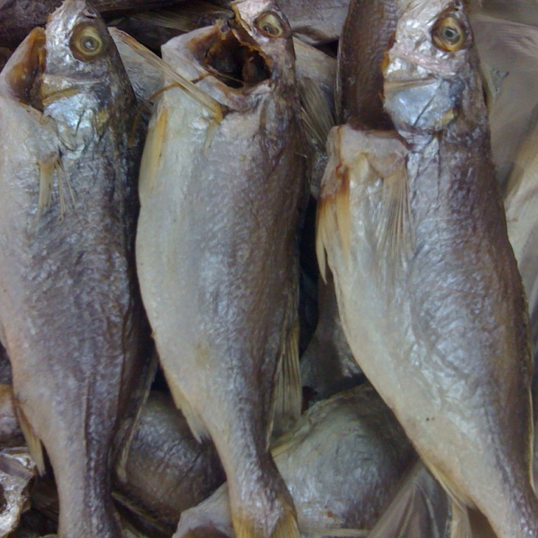 Khô cá đù tại kho