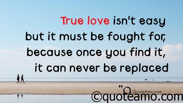 15 Best Love Quotes For Her With Video Quote Amo