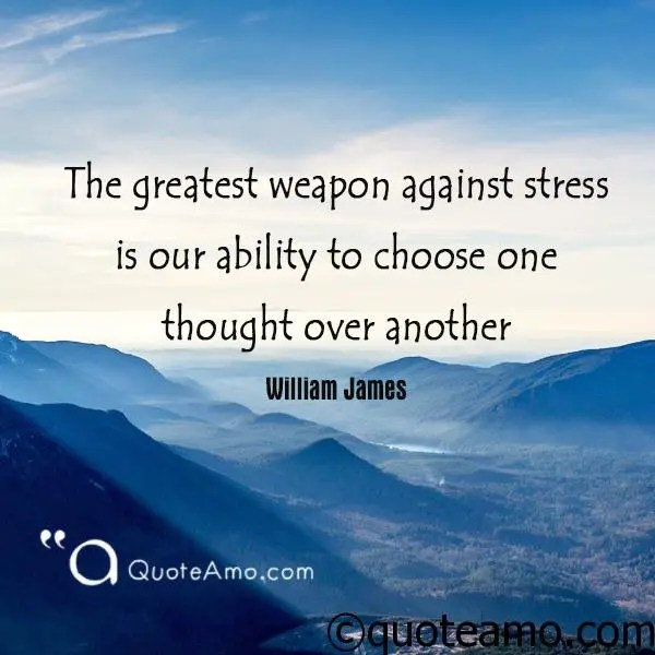 Stress Quote Impressive 20 Best Quotes And Sayings About Stress Management  Quote Amo