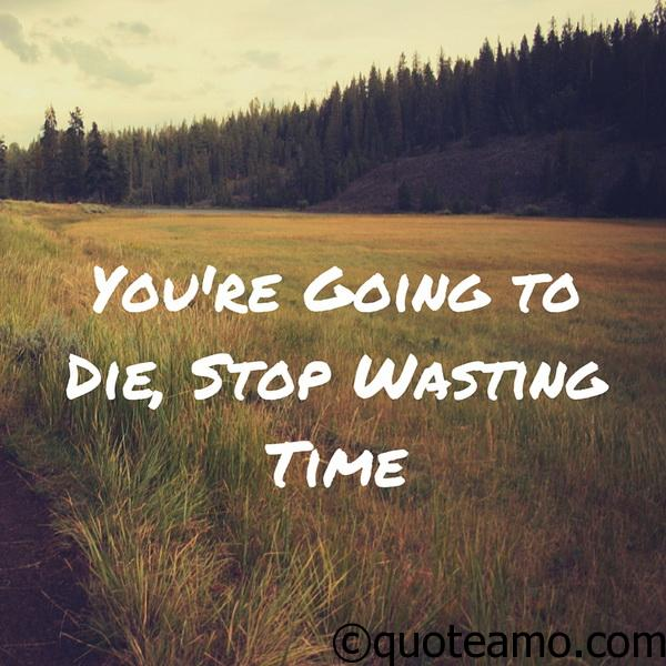 15 best quotes and sayings about wasting time quote amo