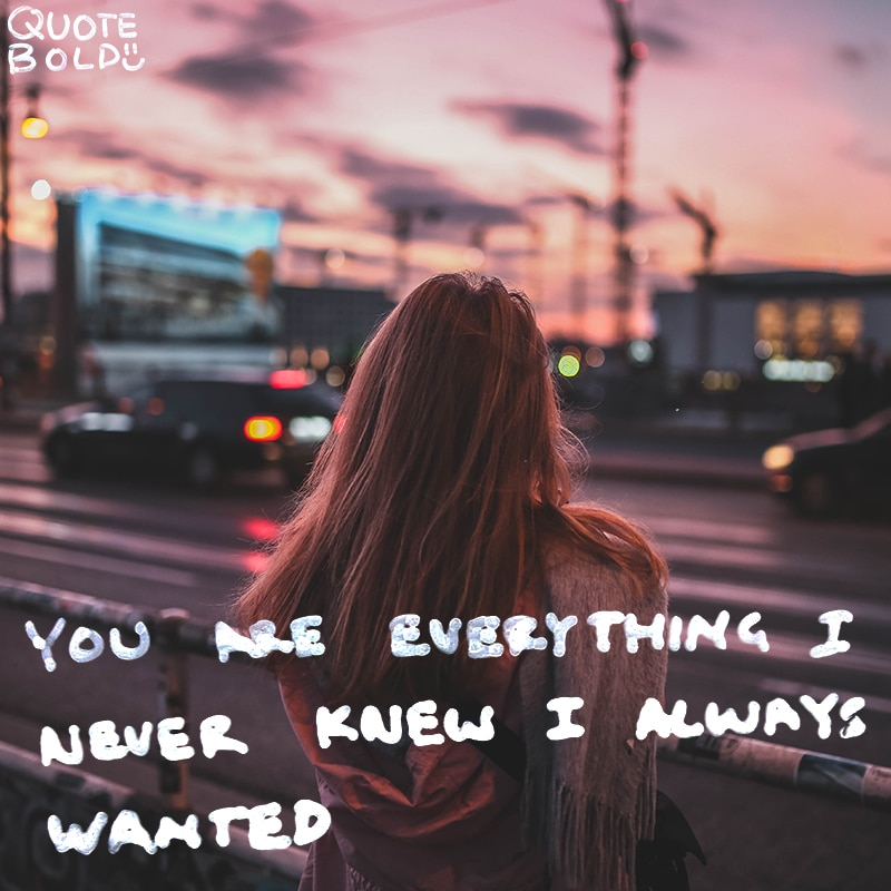 "romantic quotes ""You are everything I never knew I always wanted."" - Fools Rush In (Alex)"
