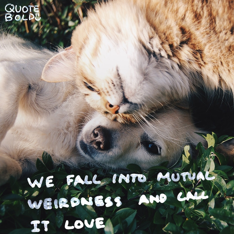 love quotes mutual weirdness