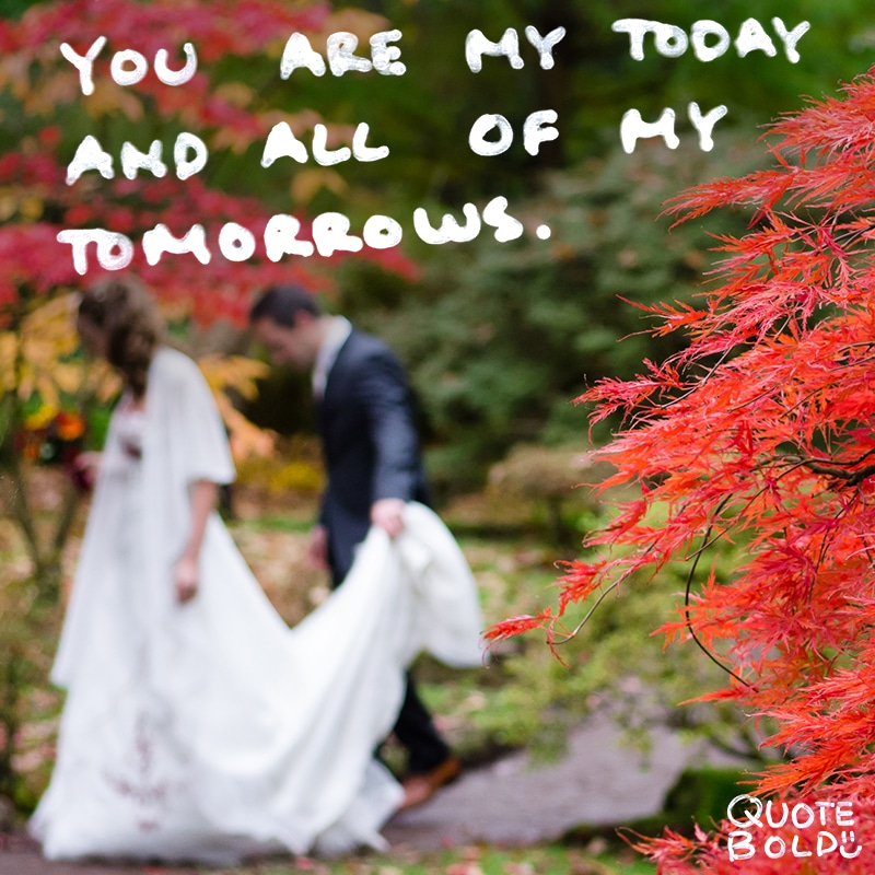 love quotes you are my today