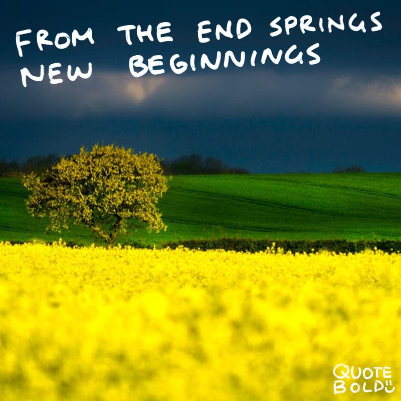 "quote ""From the end spring new beginnings."" - Pliny the Elder"
