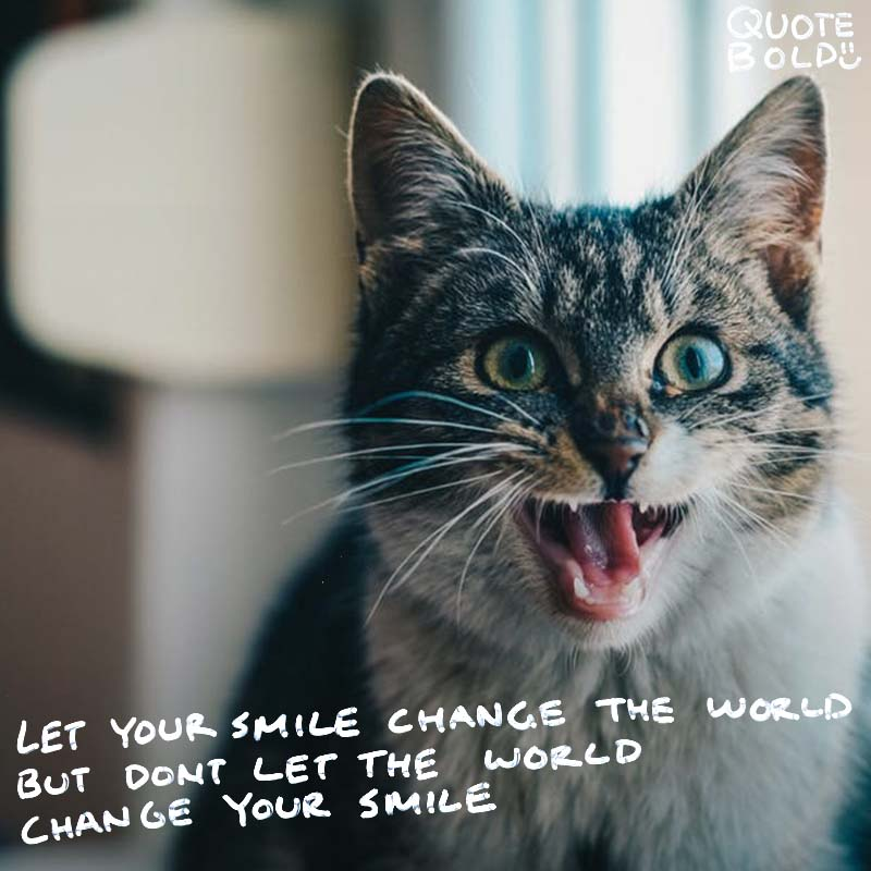 "happy quotes ""Let your smile change the world, but don't let the world change your smile."" - Connor Franta"