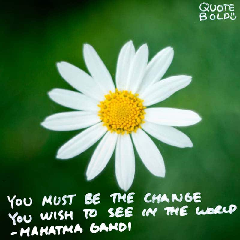 "change quote ""You must be the change you wish to see in the world."" - Mahatma Gandhi"