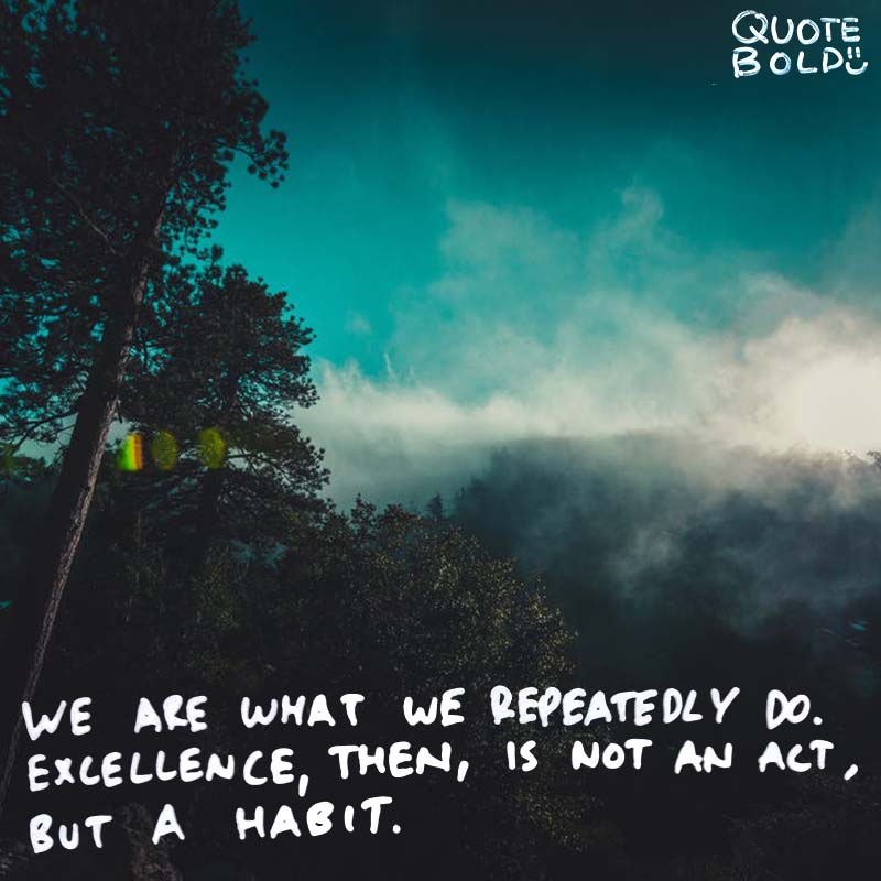 "good habit quote ""We are what we repeatedly do. Excellence, then, is not an act, but a habit."" – Aristotle"