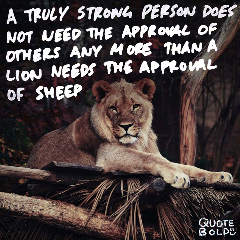 "quotes being strong - Vernon Howard ""A truly strong person does not need the approval of others any more than a lion needs the approval of sheep."""