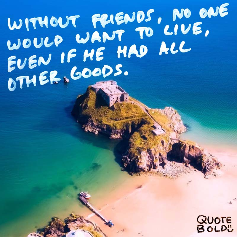 """best friend quotes image - Aristotle """"Without friends, no one would want to live, even if he had all other goods."""""""